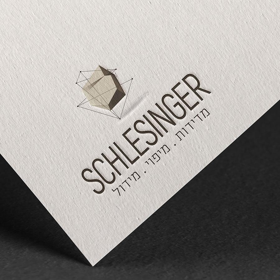 shlesinger-logo